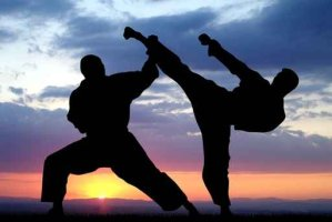 fight gc services