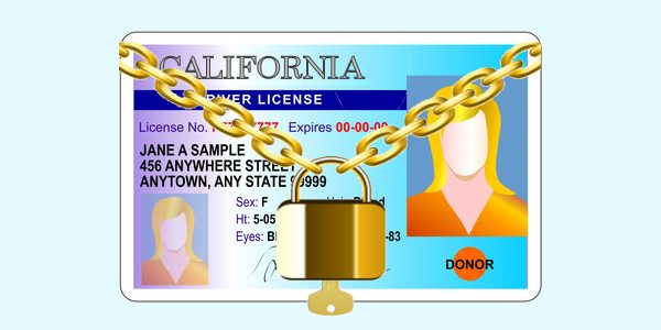 Points On Your License California Dmv Point System