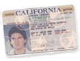 drivers license california