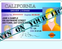 Points on your license